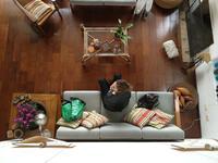 Podłoga olejowana czy lakierowana – jakie wykończenie podłogi drewnianej wybrać?
