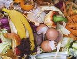 Segregacja odpadow kosze na smieci odpady organiczne IKEA